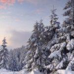 Como debes vestir en invierno
